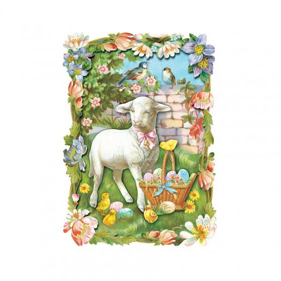 Carte postale moutons & poussins et son enveloppe