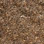 Thé noir Jardins d'Assam GBOP Inde