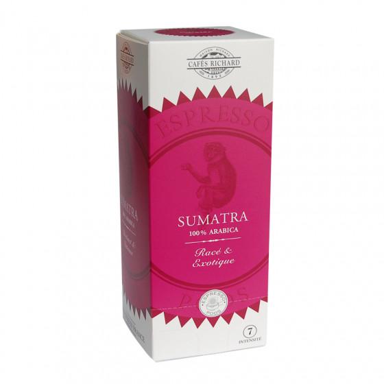 Café Sumatra pods ESE étui x25